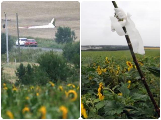 MAS MH17 Crash Site Ukraine