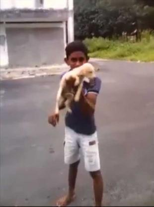 Boy Abuses Puppy Bahau Malaysia