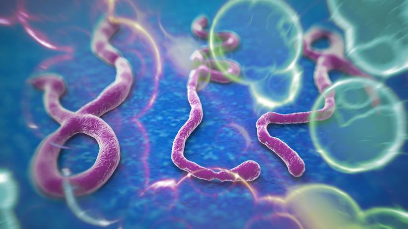 Ebola Virus Suspected Case Malaysia