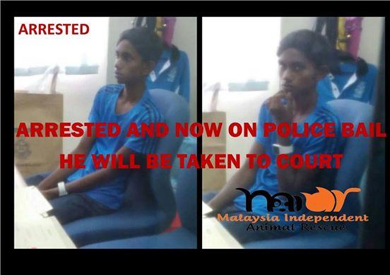 Malaysia Dog Abuser arrested