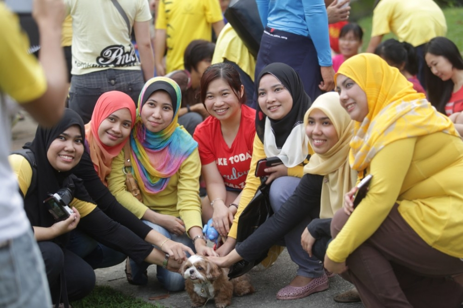 A group of Muslim ladies get acquainted with a dog at the 'I want to touch a dog' event at 1Utama's central park earlier this morning, October 19, 2014. — Pictures by Choo Choy May (Source: www.mmail.com.my)