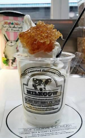 Milkcow Honeycomb Ice Cream