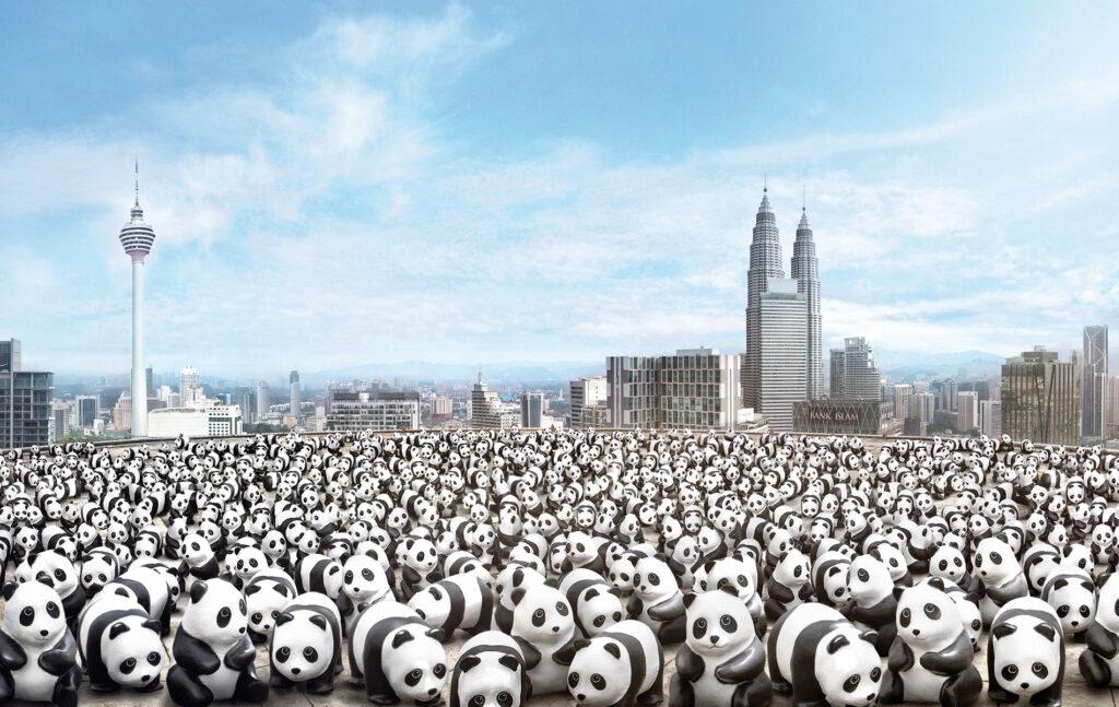 1,600 Pandas Malaysia Tour - 03