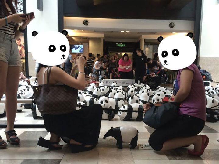 Tapi Tapir & Panda