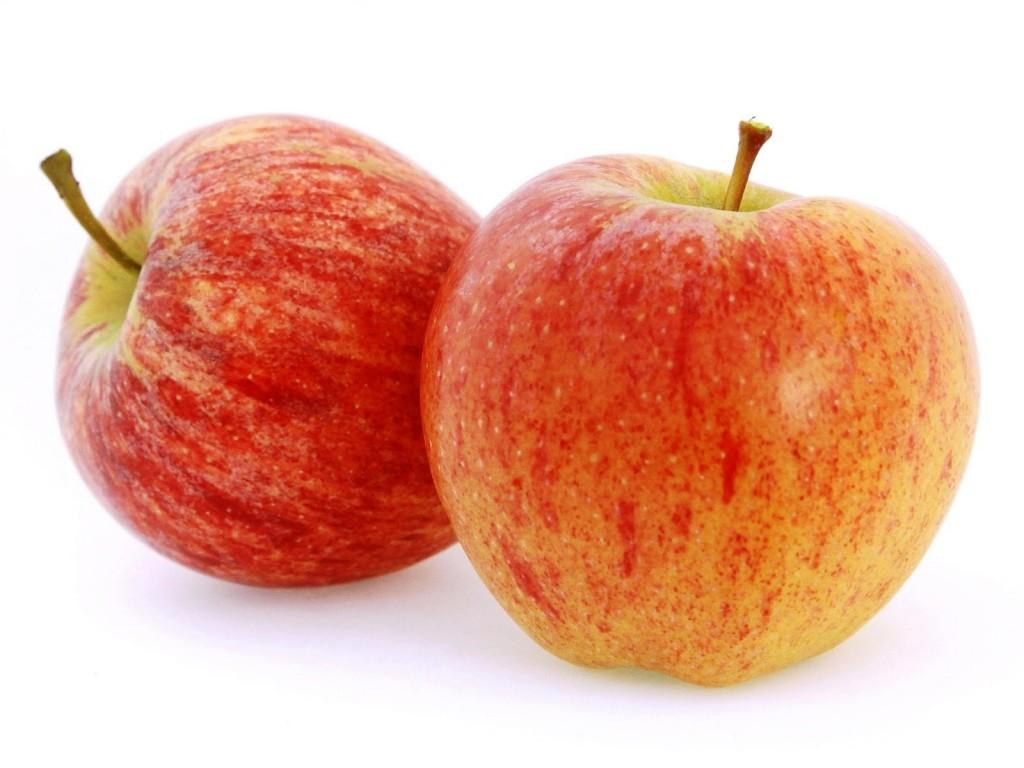 US Gala Apples