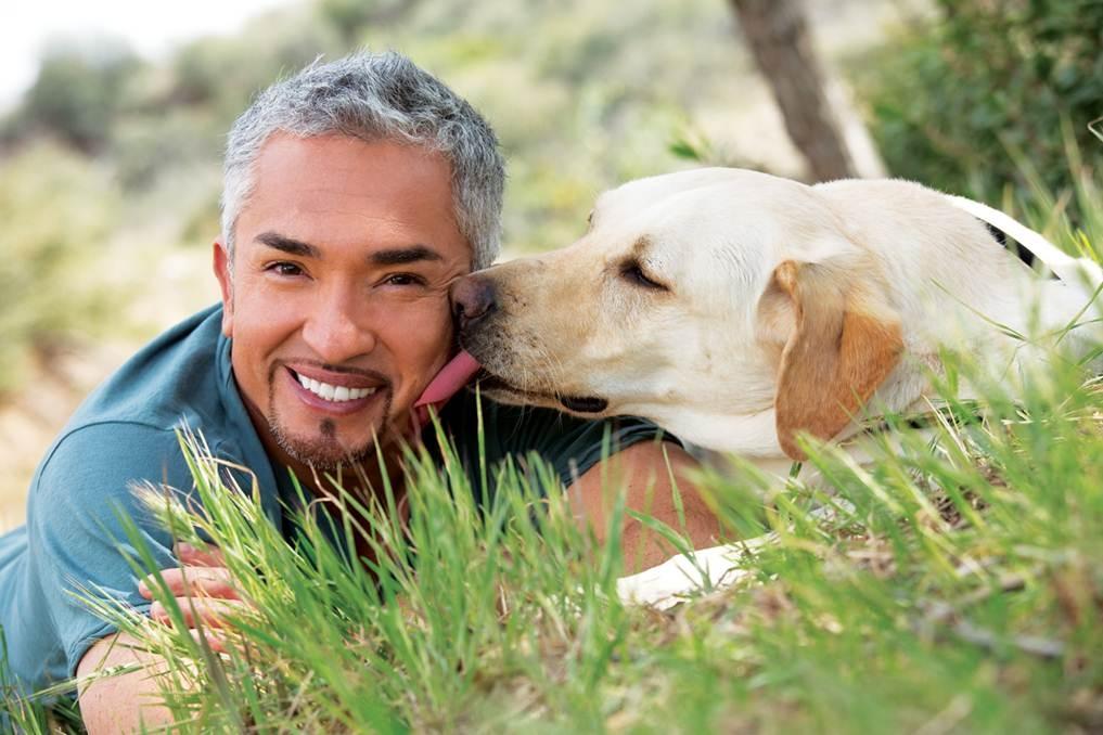 Cesar Millan Dog Whisperer
