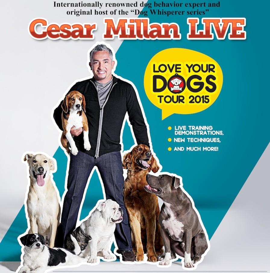 Cesar Millan Malaysia