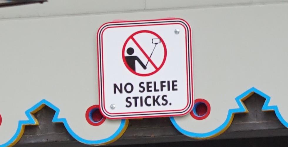Disney Selfie Stick