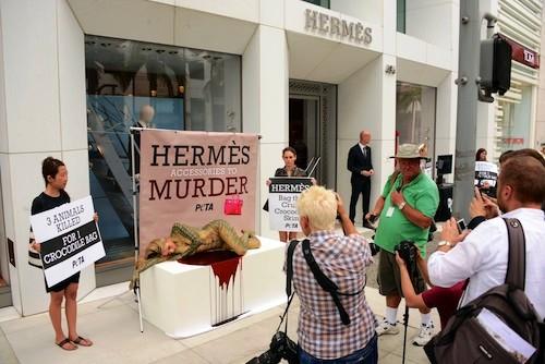 Hermes Crocodile Cruelty