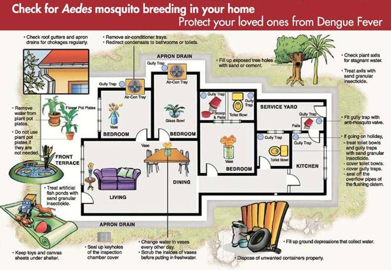 How to Avoid Mosquito Bites photo