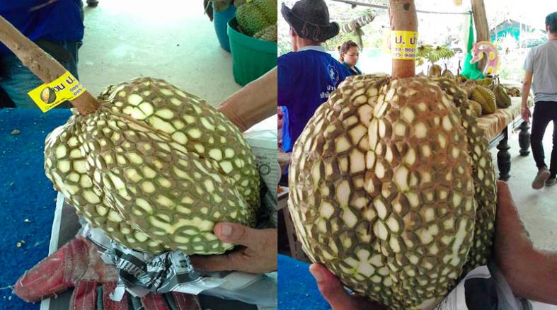Source: Bangkok Coconuts