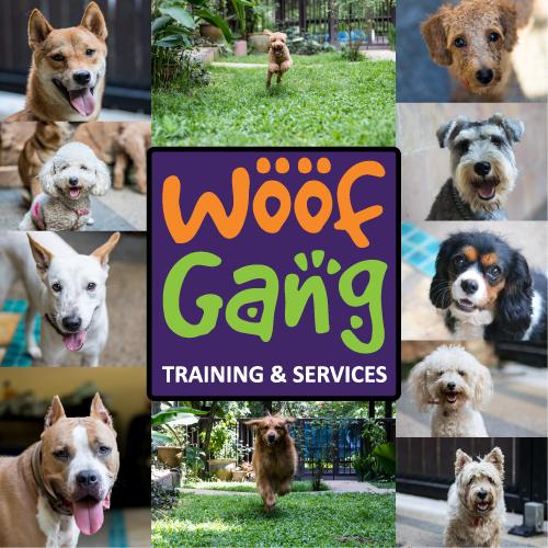 Woof Gang