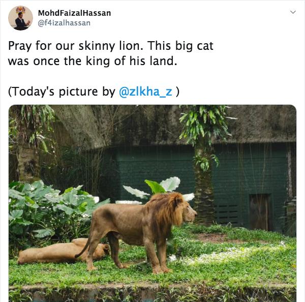 Zoo Negara